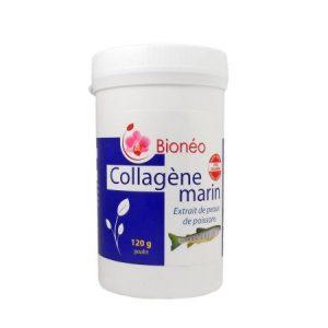 Collagene poudre